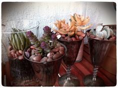 DIY: More Succulents In Tarnished Silver by Sanctuary-Studio, via Flickr
