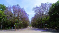 Zappeion Athens Greece