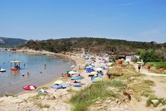 The lovely beach at Lopar on the Croatian island of Rab. There is a splendid coastline with dunes and woodland next to the beach. A great holiday if you enjoy scenery and wildlife or if you want to soak up the rays in the beach.