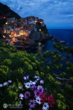 """A date with Manarola - I always try to found new point of view... some time i had to climb rocks, enter in private propiety (oppps this particular I should not say !!hahahaaahh) but sometime i've need only some flowers come out from their vessel , and the photo is done !!! don't forget to follow me  on facebook <a href=""""https://www.facebook.com/profile.php?id=100010540720590""""> Gianluca Podestà photography</a> and on instagram"""