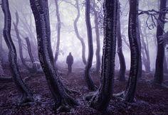 Fotograf Feel The Cold von Kilian Schönberger auf 500px