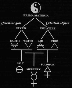 """""""For the alchemist the one primarily in need of redemption is not man, but the deity who is lost and sleeping in matter. His attention is not directed to his own salvation through God's grace, but to the liberation of God from the darkness of matter.""""   ― C.G. Jung"""