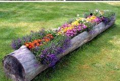 Haz que tu jardín luzca diferente con estas ideas | Guia ...