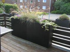pflanzkübel hoch grüner sichtschutz pflanzen terrasse