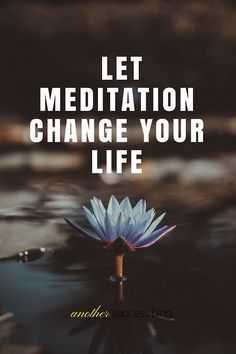 Our outside world is so overwhelming that let go and sit still can be challenging. Learn the benefits and how to implement meditation in your life today.