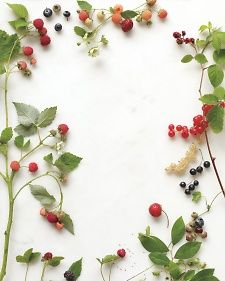 Lovely to look at and downright delicious, these vibrant fruits can put a summery twist on flowers, invitations, cakes, and more. Here are a bushel of fresh ideas, ripe for the picking.