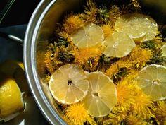 Pampeliškový med vlastně není med jako spíše sirup, to ovšem nic nemění na tom, že snoubí hned několik pozitiv. Předně se snadno připravuje, dále výborně chutná Med, Shrimp