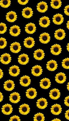 Sunflower Iphone Wallpaper, Iphone Wallpaper Yellow, Daisy Wallpaper, Emoji Wallpaper Iphone, Phone Screen Wallpaper, Flower Phone Wallpaper, Cute Wallpaper For Phone, Cute Pastel Wallpaper, Iphone Background Wallpaper