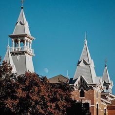 Fall at Baylor -- Bu