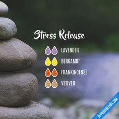 Stress Release - Essential Oil Diffuser Blend