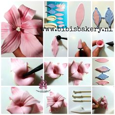 Last but not least, here is my Lily pictorial. It shows step by step how you can make it yourself. I used 2 different sizes lily cutters and a veiner, but you can also make the imprint with the dresden tool. Have fun . xxx Bibi