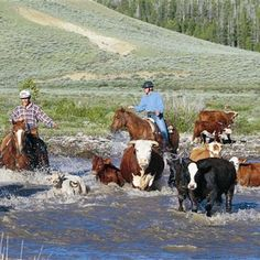 Guest Ranch Vacation - Bitterroot Ranch, Wyoming, USA | Top50 Ranches