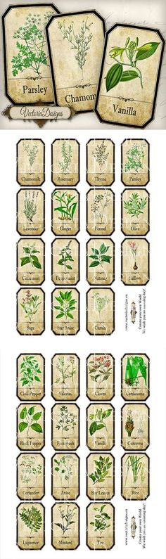 Kitchen Vintage Printables Spice Jar Labels Ideas For 2019 Printable Images, Printable Labels, Printables, Spice Jar Labels, Spice Jars, Labels For Jars, Herb Labels, Mason Jars, Etiquette Vintage