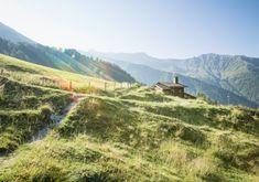 Welkom in het Zillertal - hier beleef je een heerlijke bergzomer Salzburg, Austria, Vineyard, Mountains, Nature, Travel, Outdoor, Outdoors, Naturaleza