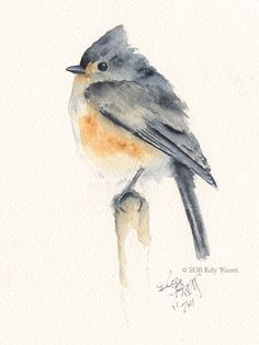 A watercolor painting of a Tufted Titmouse