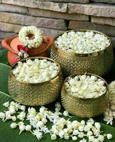 Beautiful Rose Flowers, Beautiful Flower Arrangements, Fresh Flowers, White Flowers, Diwali Decorations, Indian Wedding Decorations, Flower Decorations, Indian Flowers, Exotic Flowers