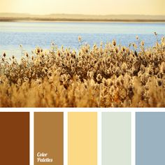 Natural combination of beige, brown and grey blue shades, both cold and warm. This color solution will do well for halls, spacious living rooms or study-libraries, as well as can be used in sports and active leisure outfits.