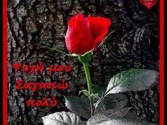 ♥ Πόσο σ΄ αγαπώ ♥ ~ Νίκος Βέρτης ~ ♥ ♪ ♫ ♥ ♪ ♫ ♥ - YouTube