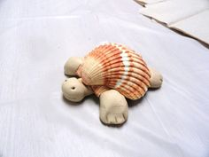 Seashell turtle!!!!!...I would like to try with baking clay