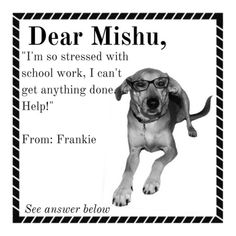 I'm so stressed, I can't get anything done. Help! Frankie asks, Mishu answers. #DearMishu #StressedOut