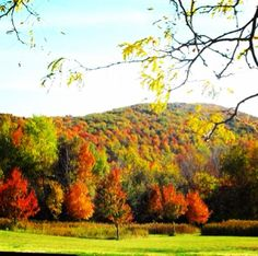 Mount Greylock in Lanesboro, MA by @moodyz0924 on Instagram