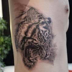 Tiger tattoo on side for men - 55 Awesome Tiger Tattoo Designs <3 !