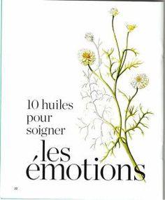 huile essentielle ,pour les émotions - Le blog de magicmina.over-blog.com