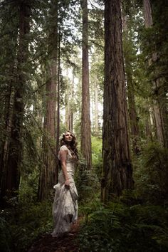 cecilia and craigs california redwood forest wedding wedding california Forest Wedding Photography Photo Ideas