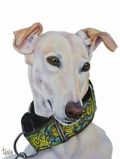 Greyhound by TanjaOnTheWall on Etsy