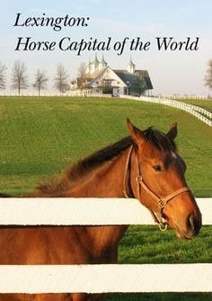 Lexington, Kentucky ~~ Horse Capital of the World and where my youngest daughter was born :)