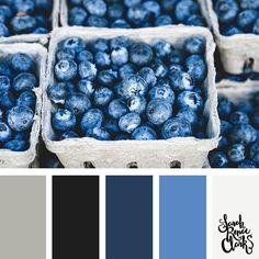 Here's some color inspiration for today!  This is one of my new color palettes inspired by the Pantone Fall color trends. I've combined Navy Peony Marina and Neutral Gray from the #Pantone predictions.  Find more color palettes on my blog:  http://ift.tt/2qQZCbS  #colorinspiration #colorpalette