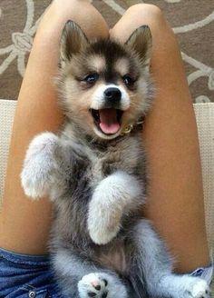 Its so happy!!