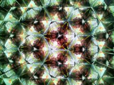 The Many Faces of Sam (reflected in a kaleidoscope)