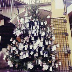 Adventparadies!das größte wichteln in Graz!Wunschzettel auf den Baum hängen oder einen herunternehmen und erfüllen.#dubistsograz .Adventparadies im paradeishof. Noch bis 23.12. Advent, Christmas Tree, Holiday Decor, Home Decor, Secret Santa, Paradise, Graz, Tree Structure, Teal Christmas Tree