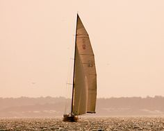 Sailing, Newport / David Fuller Photo  (by TheFullerView)