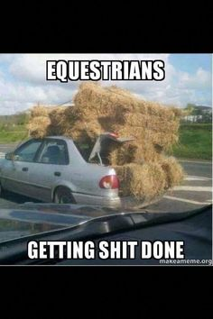 The most important role of equestrian clothing is for security Although horses can be trained they can be unforeseeable when provoked. Riders are susceptible while riding and handling horses, espec… Funny Horse Memes, Funny Horses, Funny Animals, Horse Humor, Funny Shit, Animal Funnies, Hilarious Stuff, Equestrian Memes, Equestrian Problems