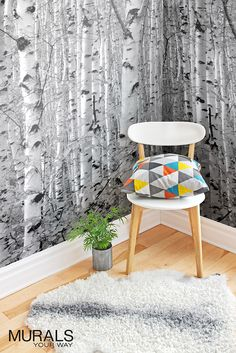 Who doesn't love birch tree wallpaper? #myMYWmural