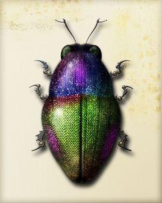 Mechanical Jewel Beetle