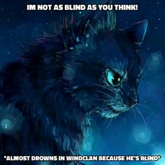 Jayfeather knows his life is harder then most. But, that doesn't mean he likes being special. A lot of cats, Like Yellowfang, don't want to be special. They just want to be the best warrior they can. Warrior Cats Quotes, Warrior Cats Series, Warrior Cats Books, Warrior 3, Warrior Cats Art, Image Bleu, Warrior Drawing, Love Warriors, Lots Of Cats
