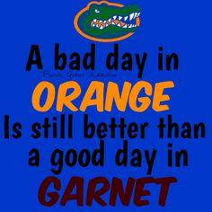 Fuck yea it is Fla Gators, Florida Gators Football, College Football, Gator Football, Florida Gators Wallpaper, Gator Basketball, Florida Girl, Football Memes, University Of Florida