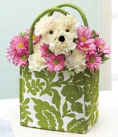 Flower dog in a cute bag