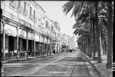 Alicante antiguo. Explanada con las vías del tranvía.