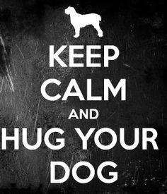 = dogs Always a great idea when things are out of control. Their unconditional love is amazing! This is why I want two dogs. Great Quotes, Quotes To Live By, Inspirational Quotes, Dog Quotes, Animal Quotes, Dog Sayings, Life Sayings, I Love Dogs, Puppy Love