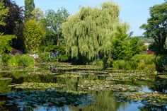 Visit Claude Monet's gardens in Giverny, France. #travel