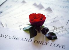 theheartbook: my one and only love by RoxaneGN. My Funny Valentine, Happy Valentines Day, A Fine Romance, Romance And Love, Lady In My Life, Love Of My Life, One And Only, Love Is All, Single Red Rose