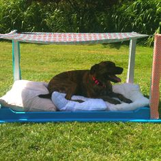 The shaded dog bed I made for my pups! :) #dogbed #diy #posterbed