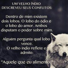 Luxo Imagens De Lobos Com Frases Em Portugues