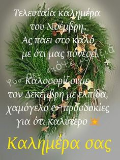 Christmas And New Year, Christmas Time, Beautiful Pink Roses, Mina, Greek Quotes, Good Morning, Diy And Crafts, Herbs, Anastasia
