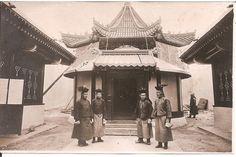 Виды и типы Монголии. 1925. Часть 2: humus