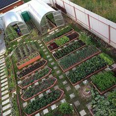 Reuse Wooden Pallets And Make A Cute Little Green Garden Garden